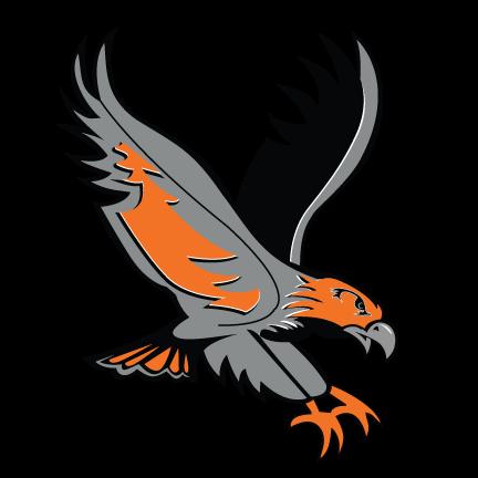 Hawk-Color